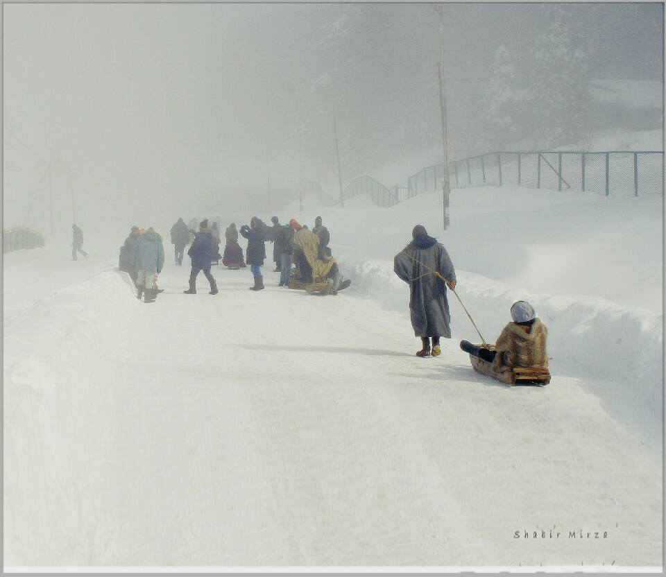sledge ride gulmarg kashmir
