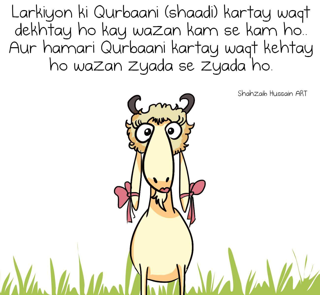 buy-sheep-eid-kashmir